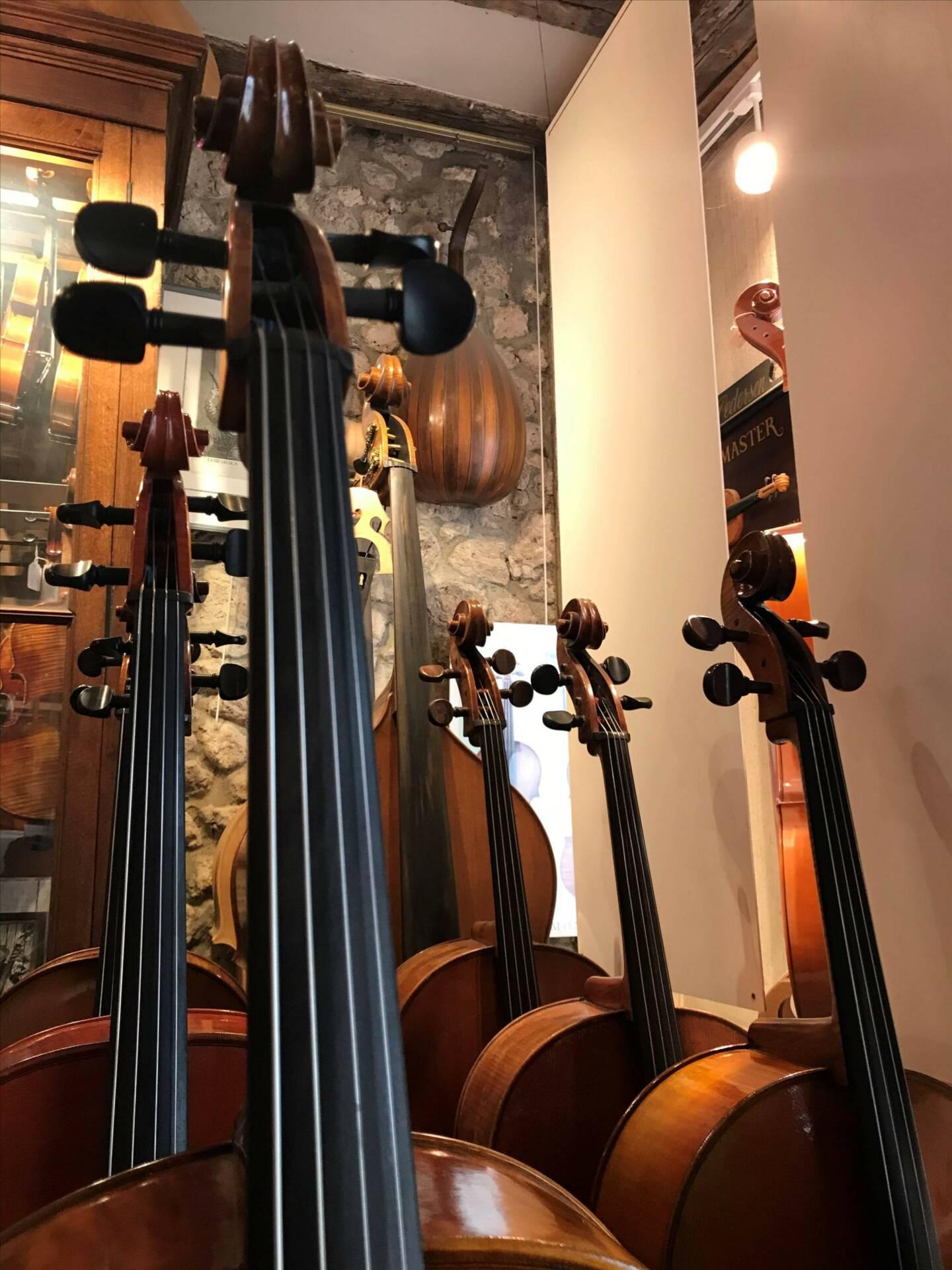Achat ou location d'instrument à cordes à Orléans   Denis Caban